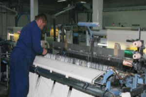 باحثة اقتصادية: تحويل شركات القطاع الصناعي إلى قابضة مخالف للدستور