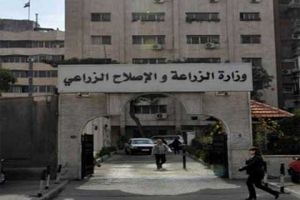 وزارة الزراعة تعترف: تسويق المحاصيل الزراعية في سورية ضعيف