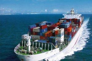 فتح خطوط جديدة مع شركات عالمية لتصدير المنتجات الزراعية
