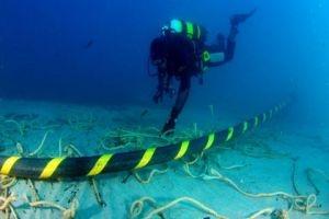 سمك القرش يقطع كبل الإنترنت الخاص بسورية من جديد!