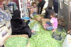 تقرير: إنخفاض مونة الأسر السورية إلى الربع بسبب الكهرباء وارتفاع الأسعار!!