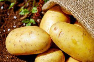 البطاطا السورية المستوردة تهرب إلى لبنان وتباع بـ300 ليرة... والسوريون يشترونها بـ500 ليرة!