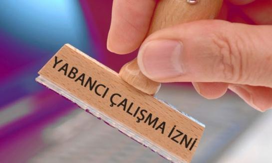 وزارة العمل التركية تطلق موقعاً للتقديم على