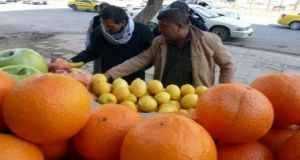 الصادرات الزراعية السورية إلى روسيا واعدة...والعراقيل أيضاً!