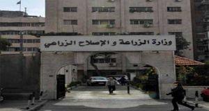 مؤسسة الأعلاف تعلن عن حاجتها لتعيين 50 موظفاً
