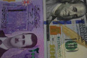 خبير: سعر الصرف تأثر بمنشورات الفيسبوك ولعبة إجازات الاستيراد