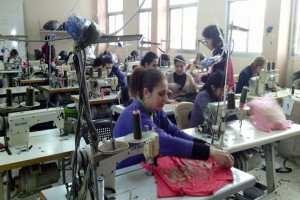 خبير اقتصادي:  المشاريع الصغيرة في سروية باتت الأسهل في التنظيم والتأسيسي