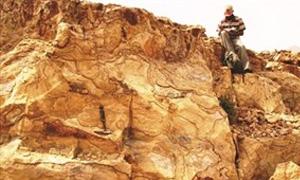 16 شركة عالمية مهتمة بقطاع المعادن اليمني