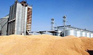 الحكومة تقرر السماح للأسـمدة بتصدير 83 ألـف طـن من مخـازين الفوسفـات والآزوت