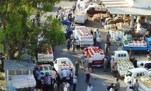 محافظ حماة : تحديد هامش الربح لتجار سوق الهـال
