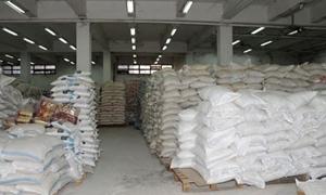 العلي: خطة لإنتاج 146 ألف طن من السكر الأبيض بسورية العام الحالي