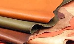 وزارة الاقتصاد تسمح بتصدير جلود الغنم والماعز حتى نهاية العام الحالي
