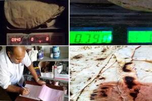التجارة الداخلية تنظم أكثر من عشرين ضبط تمويني في درعا