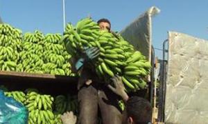 الحمضيات السورية مقابل الموز اللبناني.. والجزائري يدعولإزالة جميع الصعوبات أمام إنسياب المنتجات الزراعية بين سورية ولبنان