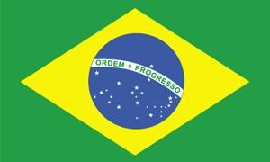 10.6 مليار دولار صادرات البرازيل الغذائية للدول العربية في2011