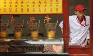 مؤشر: تحسن أنشطة قطاع الخدمات في الصين في أكتوبر