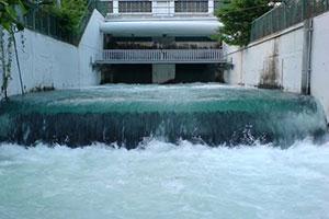 إليكم الأسباب وراء عكارة المياه في دمشق