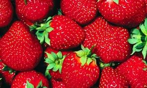 السعودية توقف استيراد منتجات الفراولة والفلفل المصرى