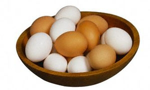لجنة التصدير تبحث ارتفاع أسعار البيض