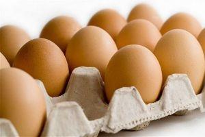 وزارة التجارة تصدر قراراً لتحقيق أستقرار أسعار البيض