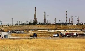 مصر قطعت شوطاً في حلّ مشاكل المستثمرين السوريين