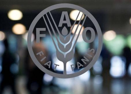 الفاو: أسعار الغذاء العالمية سجلت هبوطاً جديداً بنسبة 19%خلال العام2015