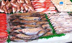 سوريا تطلق مشروعان لزيادة الثروة السمكية بطاقة إنتاجية 125 الف كغ للبحري و20 طناً من سمك المشط منتصف العام الحالي