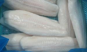 رغم منعه في العديد من الدول والتحذيرات..    الأسماك المجمدة تنتشر في الأسواق وسعر الكيلو يبدأ من 700 ليرة