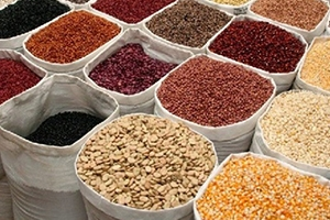 ارتفاع اسعار الغذاء العالمي لأعلى مستوى لها في عام و نصف