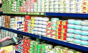 حماية المستهلك تنظم 91 ضبط تمويني خلال الشهر الماضي في دمشق وسط استقرار في اسعار الخضار والفواكه