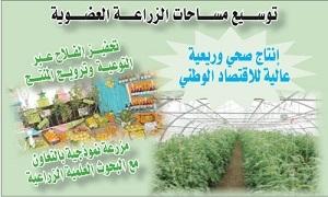 التخطيط لزيادة المساحات المخصصة للزراعة العضوية في سورية