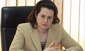 الناصر: إعفاء المنشأت السياحية المستمرة بالعمل من بدلات الاستثمار بنسبة 50%