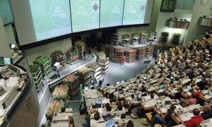 اتحاد المصدرين: اتفاقيات تربط بورصة دمشق للزهور مع بورصة هولندا لتحديد الأسعار
