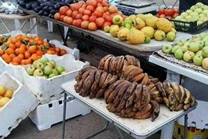 تموين حمص تنظم نحو 700 مخالفة تموينية وإغلاق 207 محال خلال شهر رمضان