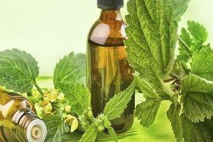 مسؤول سابق يقول: 32 صنفاً من أدوية الأعشاب في أسواقنا مغشوشة ومضرة بصحة المواطن!