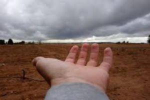 خبير يدعو لمنع زراعة المحاصيل الشرهة للمياه  في ظل شح الهطولات المطرية