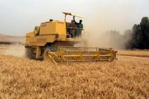 محافظ إدلب لأصحاب الحصادات: حقكم محفوظ!