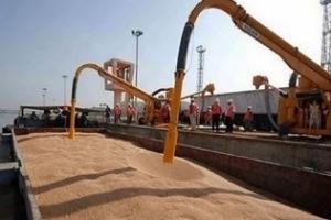 وزير الاقتصاد: مليون طن من القمح الروسي ستصل إلى سوريا قبل نهاية العام
