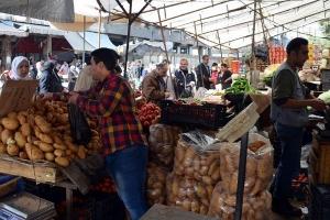 تجار سوق الهال: انخفاض أسعار الخضر ولا مؤشرات لانخفاض أسعار الفواكه