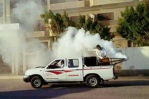 محافظة دمشق تتصدى للخنافس السوداء: برنامج يومي للرش الضبابي