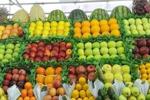 لجنة سوق الهال: بسبب التصدير.. المواطنون لم يذوقوا الفاكهة هذا العام