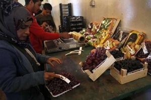 التصدير السوري... زراعي وخام