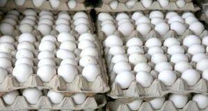 في الحسكة..صحن البيض يحلق إلى 1200 ليرة..والفروج إلى ألف ليرة للكيلو