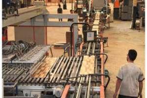 عودة 200 مستثمر إلى المنطقة الحرة في عدرا من اصل 495 مستثمراً