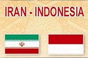 إندونيسيا تسعى للمشاركة في تطوير حقلين نفطيين إيرانيين