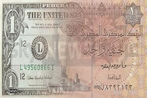 ماذا يعني تعويم العملة الوطنية لأي بلد؟ مصر نموذجاً