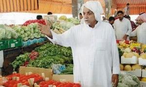 الكشتو: لا اقتصاد أزمة وقرار منع تصدير الخضار سيدفع الفلاح للتخلي عن الزراعة