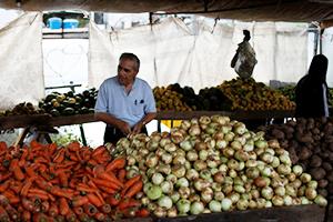 مسؤول أردني: 6 شاحنات من الفواكه السورية تدخل الأردن يومياً...وكيلو التفاح بالرمثا أرخض من دمشق