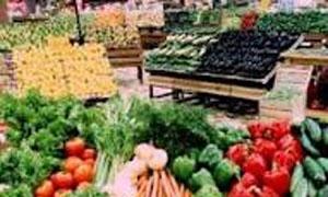 50 ليرة تسعيرة شبه موحدة للخضر في حماة..وكيلو الفروج الحي ينخفض إلى 150 ليرة