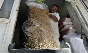السعودية تطرح مناقصة لشراء 495 ألف طن من القمح الصلد